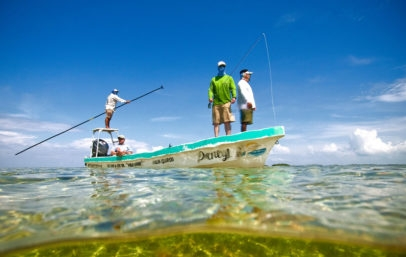 Guide to Angler Ratio Palometa Club