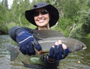 Alaska Greyling River