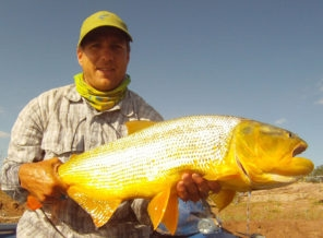 Golden Dorado River Cruiser